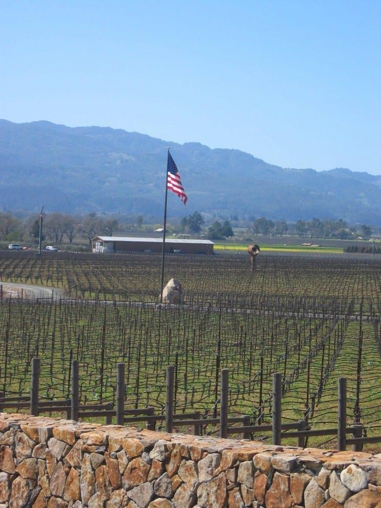 American flag in napa valley vineyard