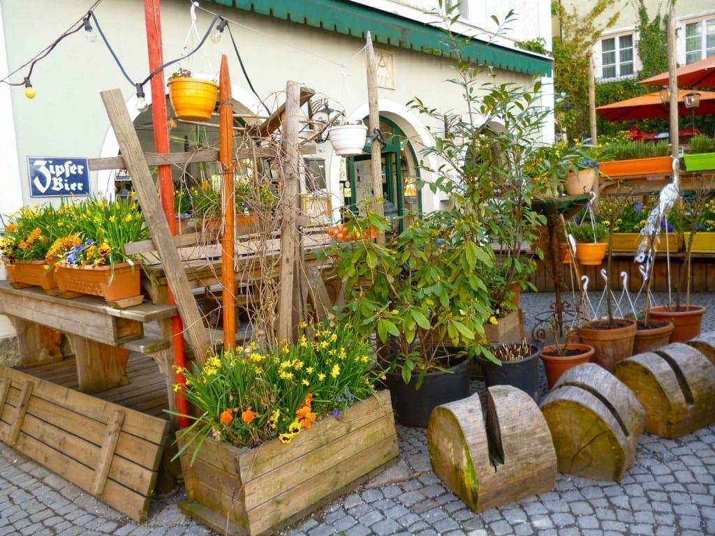 plant shop in salzburg