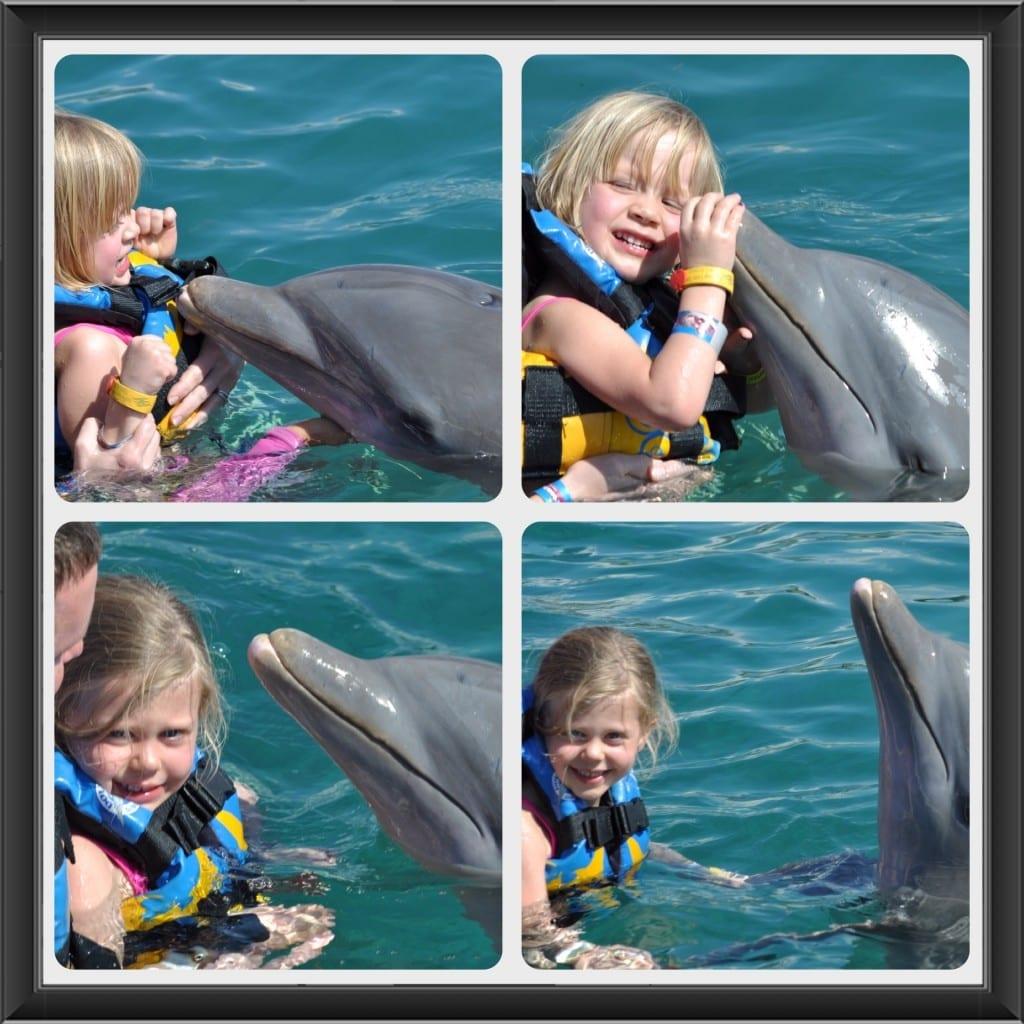 dolphin discovery Chankanaab Park