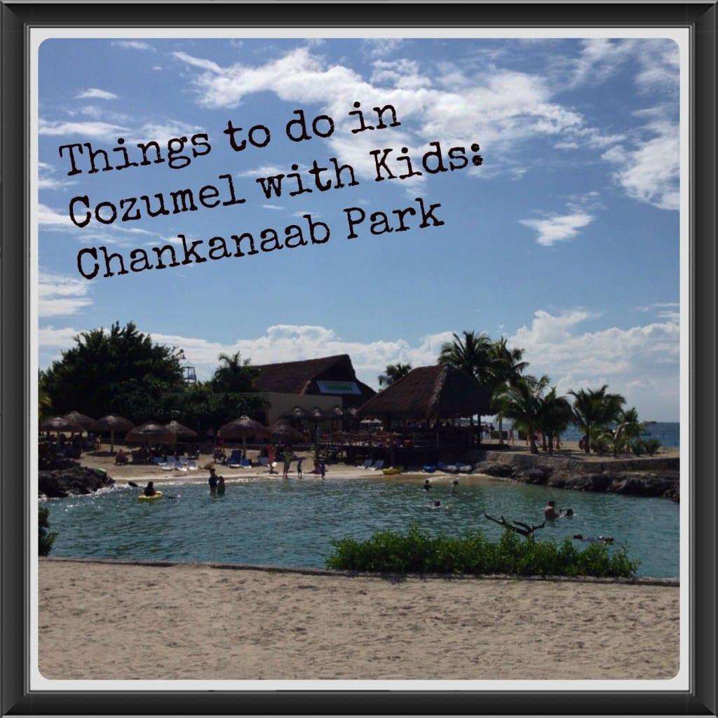 Things to do in Cozumel with Kids Chankanaab Park
