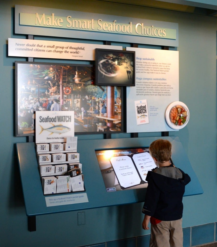 Monterey Bay Aquarium created Seafood Watch in 1999