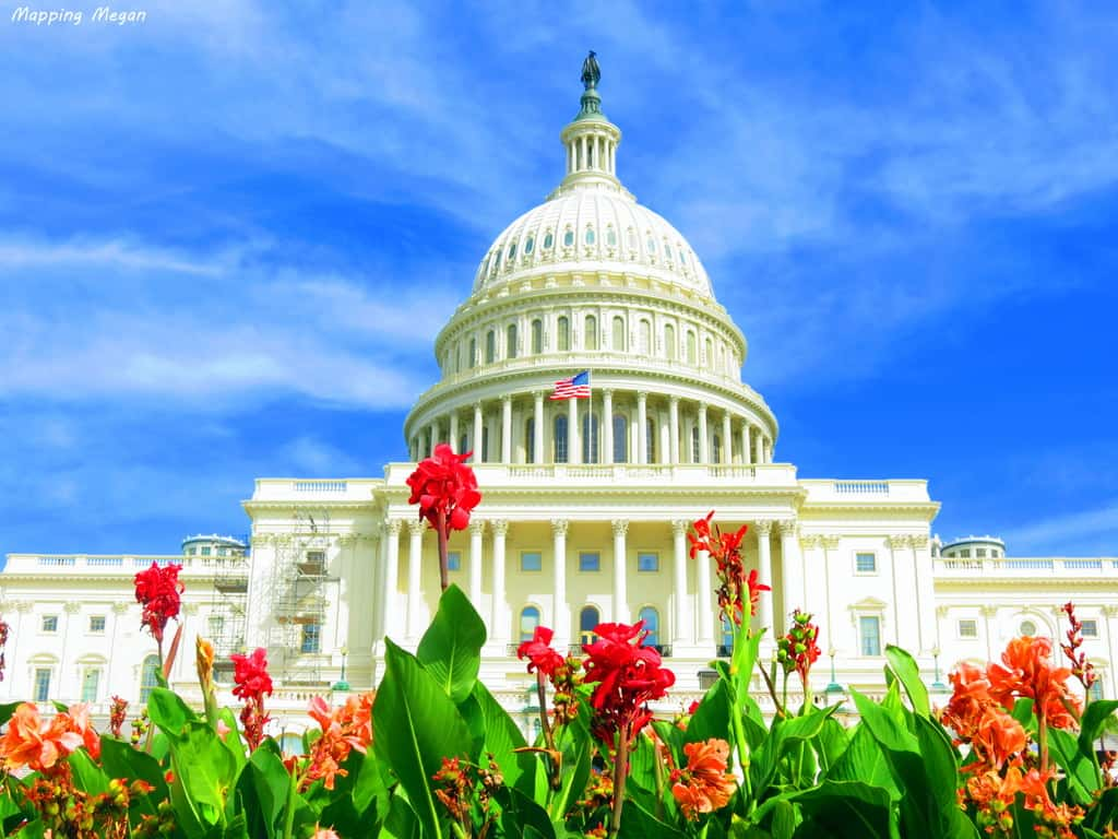 United States Capitol Building by Megan Claire at MappingMegan.com