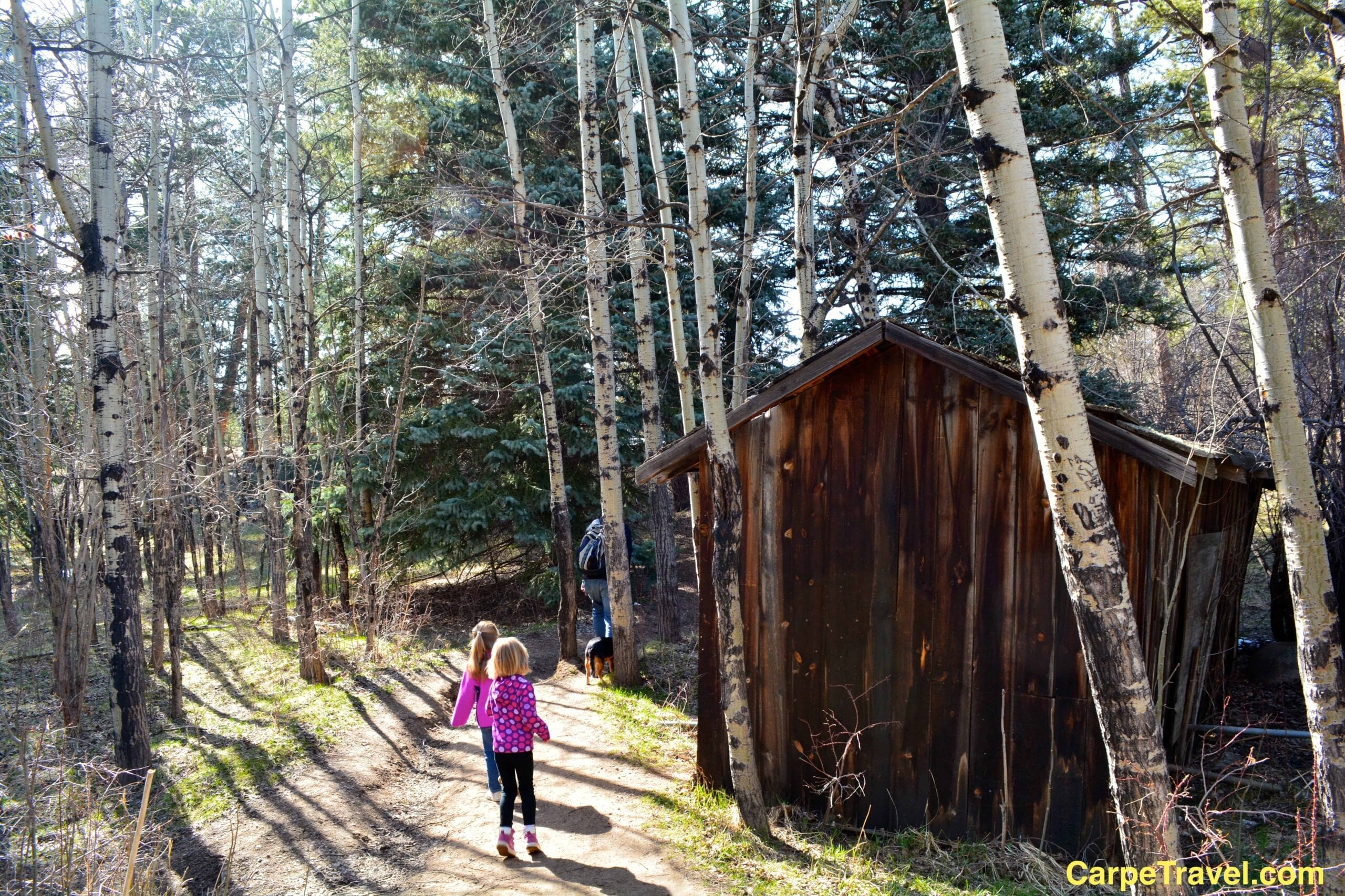 Best Family Friendly Hikes in Rocky Mountain National Park