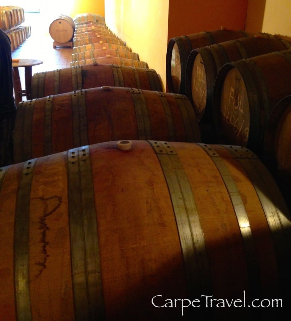 wine tour of ettore germano cantina in piedmont wine region