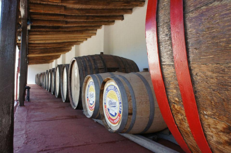 Tips and things to know if you're planning any wine tours in Mendoza
