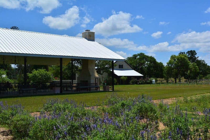 Texas Hill Country Wineries to Visit: Becker