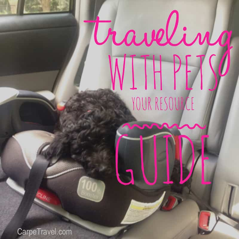 Traveling with Pets – A Guide to all the Resources to Help Bring (or leave) Fido