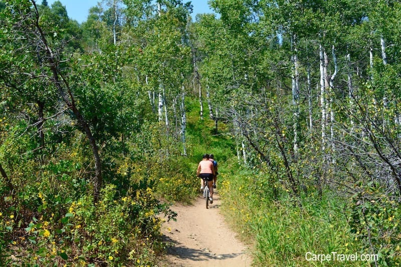 Things to do in Steamboat Springs with Kids - MOUNTAIN BIKING. Click through for more summer and winter activities in Steamboat Springs.