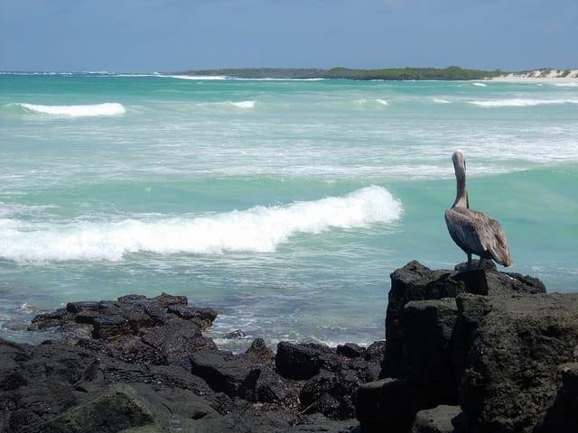 Alternatives to Bora Bora: Explore more of French Polynesia - Nuku Hiva