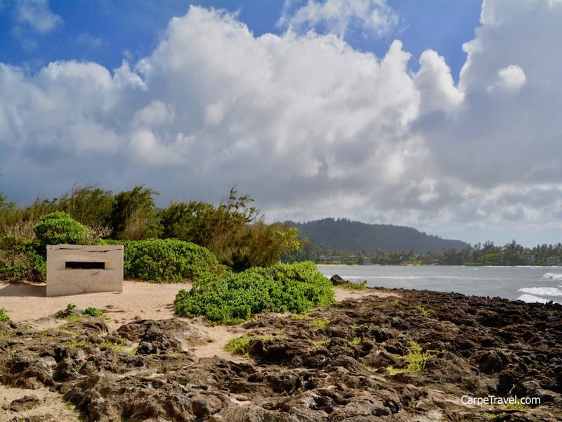Turtle Bay Resort is home to an extensive trail system. Along one of the trails from Turtle Bay beach to Kawala Bay Beach Park sits