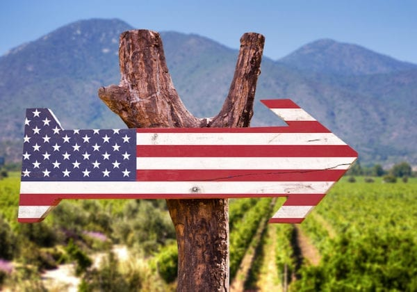 From A to Z: Top Wine Festivals in Every State Not to Miss!