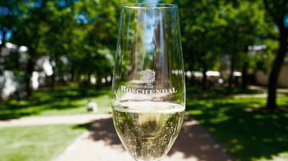 Boschendal Wine Estate - One of the Top 10 Must Sip Cape Town Wineries