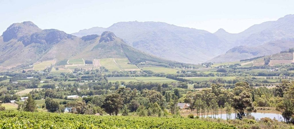 La Motte Wine Estate - One of the Top 10 Must Sip Cape Town Wineries