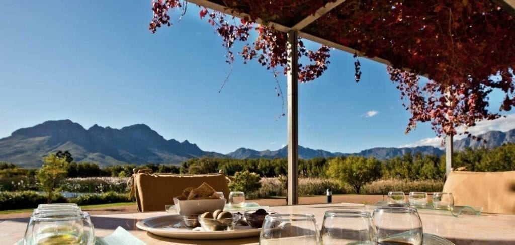 Morgenster Wine and Olive Estate - One of the Top 10 Must Sip Cape Town Wineries