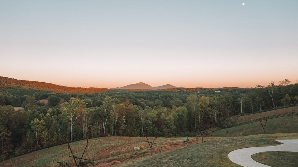 Cottage Vineyards - One of the North Georgia Wineries Not to Miss