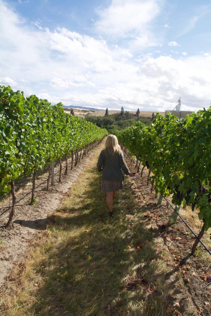 Wine tasting in Walla Walla Washington