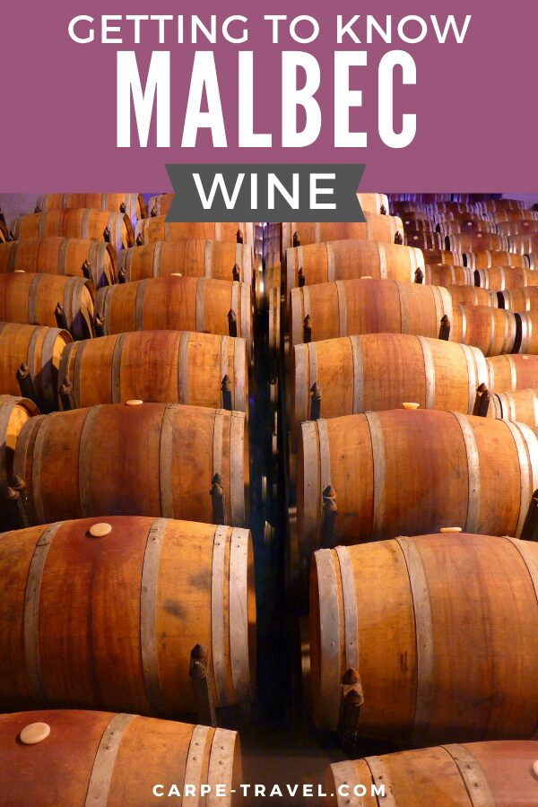 Getting to know Malbec wine. Time to pour into the details about your favorite red wine grape varieties and the wines they're producing! Click over for Carpe Travels guide to understanding the wine regions producing Malbec wine and the grape itself.
