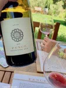 Best Sustainable Wines