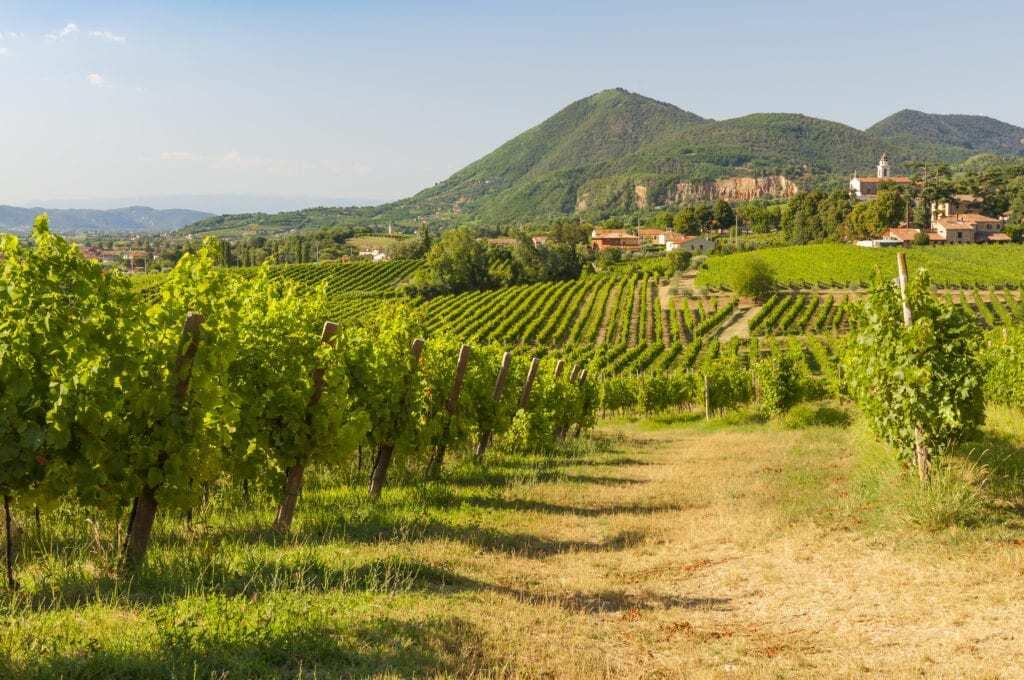 Prossecco, Italy