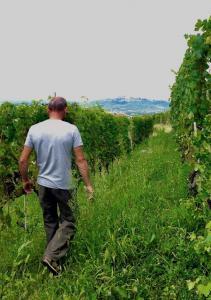 Wine Travel to Piedmont Italy, touring Franco Rocca Wine