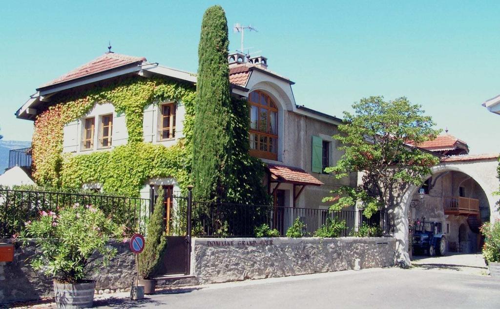 Swiss Wine - Satigny Pellegrin