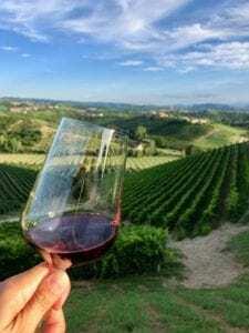 Barolo Wine Region, understating the wines in Barolo