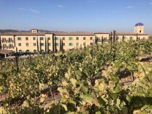 Where to Stay in Paso Robles - Allegretto vineyard
