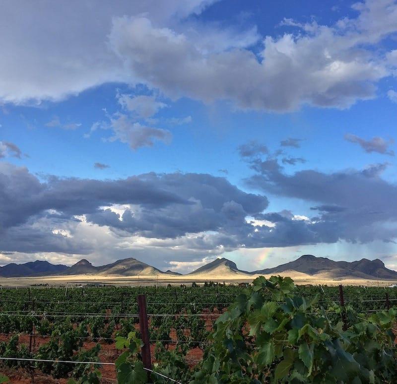 Callaghan Vineyards in Sonoita AZ