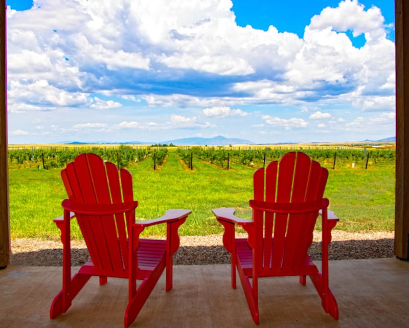 Wineries in Sonoita Not to Miss -Deep Sky Vineyard