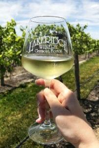 Lakeridge Winery in Florida