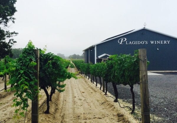Plagidos Winery in New Jersey