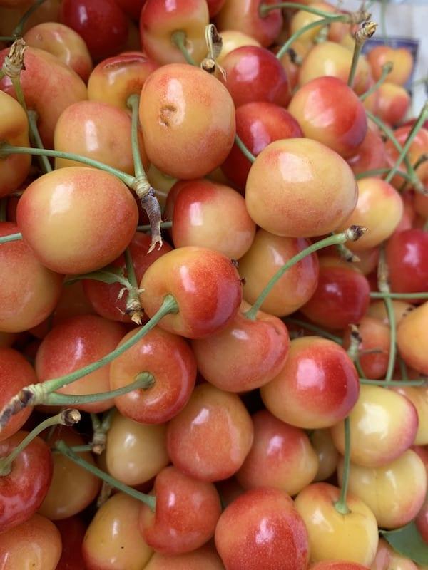 Fruit stands in wine regions