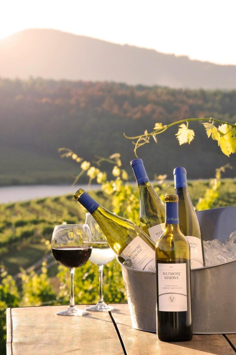 Biltmore Estate North Caroline Wine country