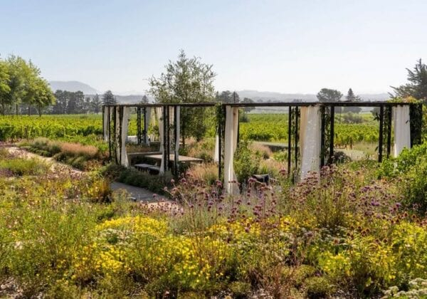 Healdsburg Sonoma - Flowers Vineyards & Winery by Jess Lander