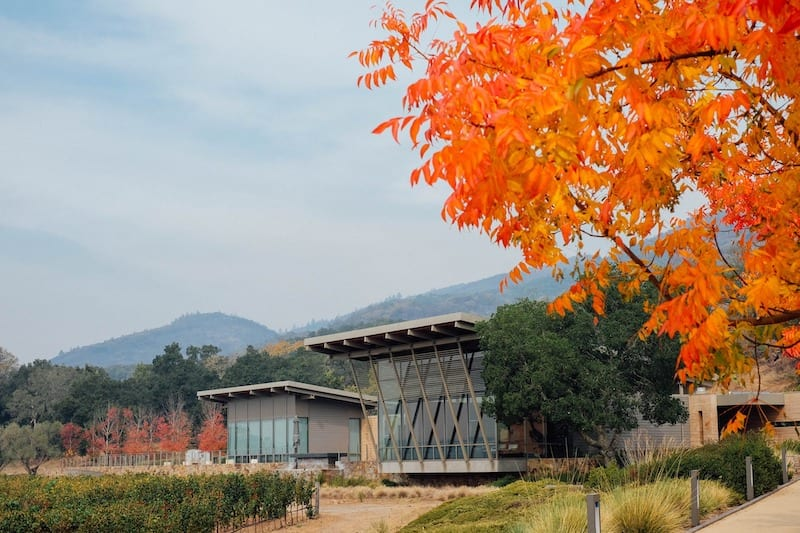 Sonoma Wineries to Visit - Hamel Family Wines
