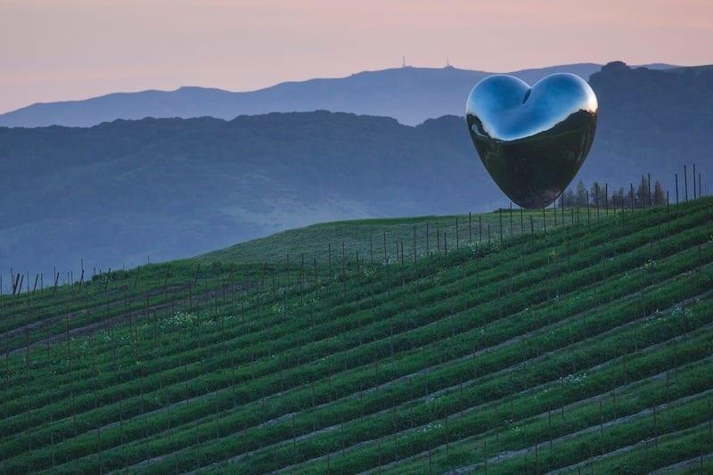 Sonoma Wineries to visit - Donum Estate by Jess Lander