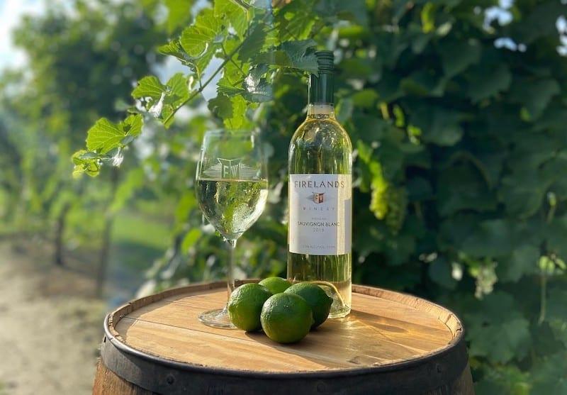 Ohio Wineries - Firelands Sauvignon Blanc in Vineyard